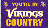 NFL Minnesota Vikings Flag with Grommetts Flag