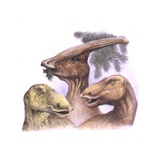 Palaeozoology, Cretaceous Period, Dinosaurs, Parasaurolophus, Edmontosaurus Print