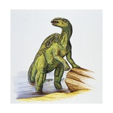 Illustration of Anatotitan by Tree Log Prints