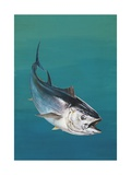 Close-Up of an Atlantic Bluefin Tuna (Thunnus Thynnus) Art
