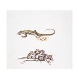Garden Dormouse (Eliomys Quercinus) and Lizard, Illustration Poster
