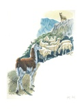 Llama Lama Glama Guarding Flock of Sheep, Illustration Posters
