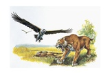 Saber Tooth Tiger with Prehistoric Birds Prints