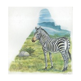 Mountain Zebra Equus Zebra, Illustration Posters