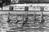 August 1977:  British Synchronized Swimming Team Legs at Euro Championship. Reproduction photographique