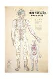 Focal Points of the Human Body, Front View, Watercolor Digitálně vytištěná reprodukce