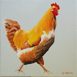 Blonde Chicken Art by Heidi Martin