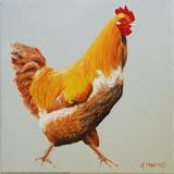 Blonde Chicken Art by Heidi Martin