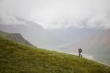 A Woman Hiking in Denali National Park, Alaska Fotografisk tryk af John Burcham