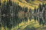 Aspen and Spruce Trees Reflect Autumn Color in Lizard Lake Photographic Print by David Hiser