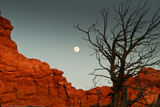 Moon Canyon Photo by Sally Linden