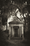 Spanish Moss-draped Tree Branches Hang Over a Mausoleum Fotografisk tryk af Amy & Al White & Petteway