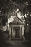 Spanish Moss-draped Tree Branches Hang Over a Mausoleum Fotografie-Druck von Amy & Al White & Petteway