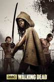 Walking Dead - Michonne Poster
