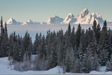 A Winter Forest Scene with the Teton Range in the Distance Photographic Print by Greg Winston