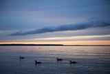 Leech Lake at Dusk Photographic Print by Joel Sartore