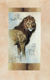 Lion Poster von Judy Gibson