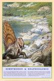 Dimetrodon and Edaphosaurus Dinosaur Poster