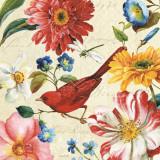 Rainbow Garden III Poster von Lisa Audit