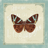 Parisian Butterfly II Posters by Sue Schlabach