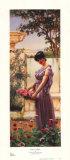 Flowers of Venus Prints by John William Godward