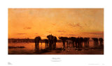 Elephants at Sunset Prints by Charles Tournemine