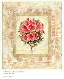 Azalea Primavera I Poster by Susan Davies