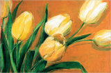 Tulipa Nova Prints by Elisabeth Krobs