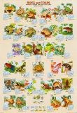 Frogs and Toads Posters