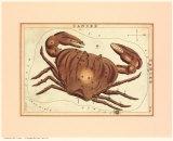 Zodiac Symbols: Cancer Poster von Sidney Hall