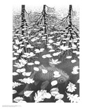 Three Worlds Posters by M. C. Escher