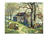 Old Tulip Tree Long Island Art by Ernest Lawson