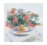 Geraniums, 1986 Prints by Dawna Barton