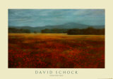 French Poppy Fields Prints by David Schock