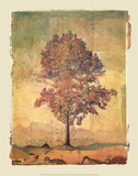 Autumn Tree Study I Art by Donald Farnsworth