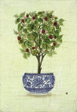 Red Berry Topiary Poster by Iksel