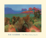 High Desert Prints by Mary Silverwood