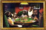 Chiens jouant au poker Affiches