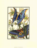 Butterfly V Prints by William Henry Pearson