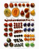Frutas de verano Pósters