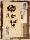 Zen Peonies Print by Pamela Gladding