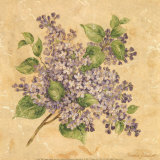 Lilac Prints by Pamela Gladding