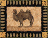 Camel Posters by Pamela Gladding