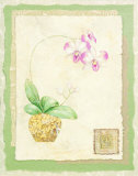 Orchid I Posters by Pamela Gladding