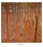 Beechwood Forest, 1903 Kunst av Gustav Klimt