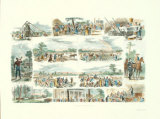 Scenes on a Cotton Plantation Print by Alfred Rudolf Waud
