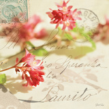 Vintage Letters and Pink Blossoms Art by Deborah Schenck