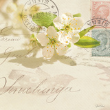 Vintage Letter and Apple Blossoms Pósters por Deborah Schenck