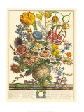 March Posters by Robert Furber
