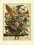 August Prints by Robert Furber